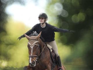 the-horse-1858338_1920.jpg