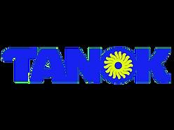 Fase 2_TANOK.png
