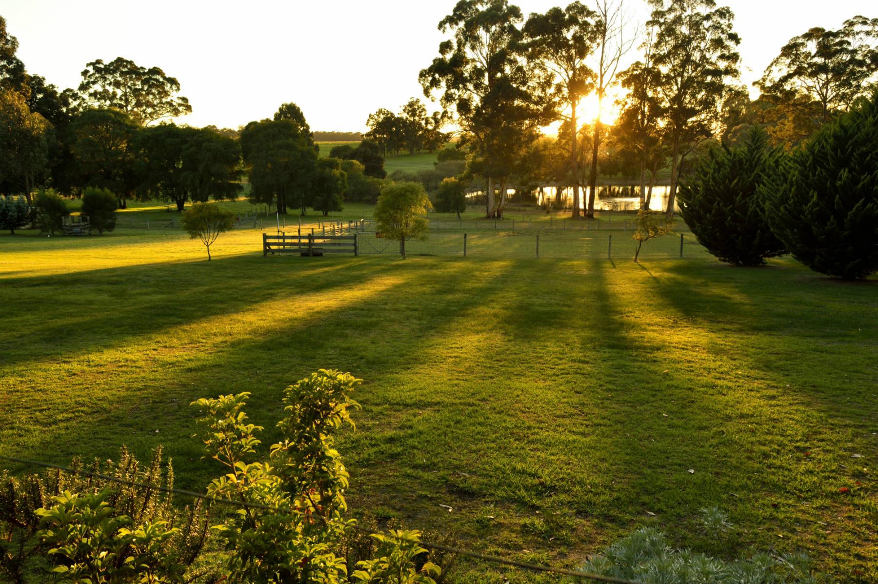 Scenic rural views