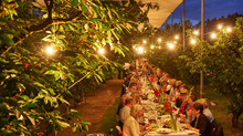 Manjimup Cherry Harmony Festival