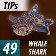 Whale Shark Tips