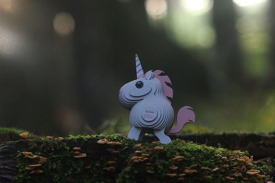unicorn_05.JPG