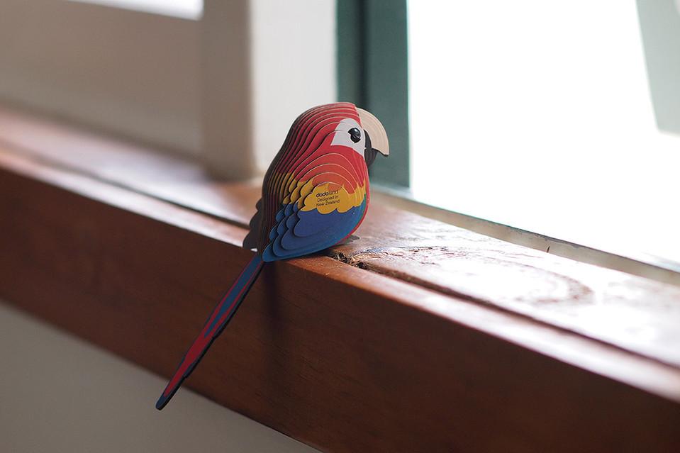 parrot_a01.JPG