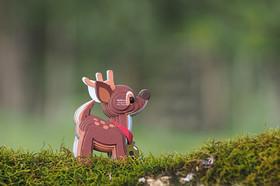 reind02.JPG