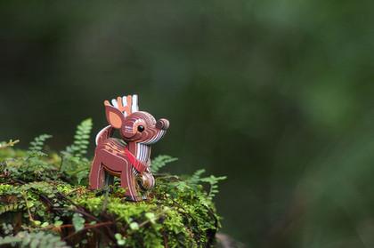reind09.JPG