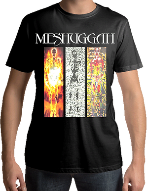Meshuggah - Destroyer