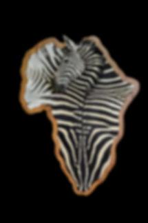 ZEBRA AFRICA DECOR.JPG