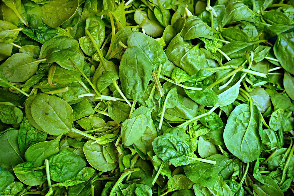 weight loss spinach