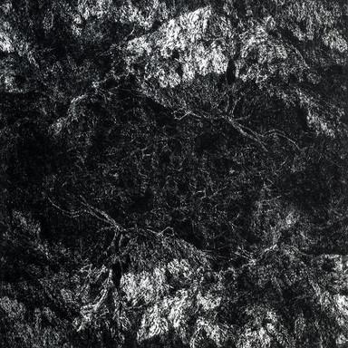 NOC I. / čárový lept 50x50cm / 2014      Night. I. / etching 50x50cm / 2014