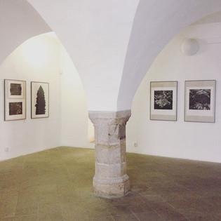 Vizuální mytologie / Oblastní galerie v Jihlavě / 2018      Visual mythology / Regional gallery in Jihlava / 2018