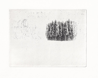 KRAJ LESA / čárový lept 19,5x15cm / 2016    Forest edge / etching 19,5x15cm / 2016