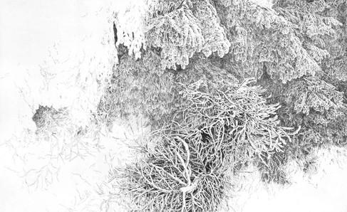 POHLED ZE SVĚTLA / čárový lept 80x50cm / 2017  ve sbírkách Východočeské galerie v Pardubicích      View from the light / etching 80x50cm / 2017  in the East Bohemian gallery collections / Pardubice