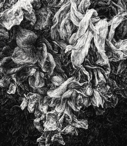 NOČNÍ ZAHRADA / tuš na plátně 70x80cm / 2021       Night garden / ink on canvas 70x80cm / 2021