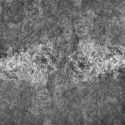 ŠUMĚNÍ LESA II. / čárový lept 30x30cm / 2014     The Forest noise II. / etching 30x30cm / 2014