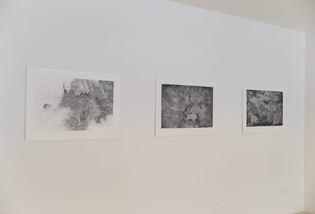 Nová vlna - diplomanti AVU / Národní galerie v Praze, Veletržní palác / 2017      New Wave / National gallery in Prague / 2017