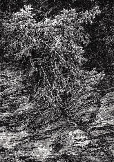 VE SKALÁCH / perokresba na papíře 30x21cm / 2020       In the rocks / ink drawing on paper 30x21cm / 2020