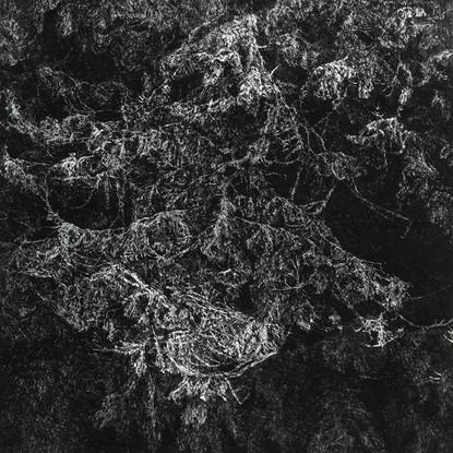 NOC II. / čárový lept 50x50cm / 2014     Night II. / etching 50x50cm / 2014