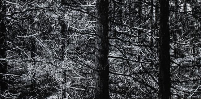 SVĚTELNÝ PROSTOR / tuš na plátně 40x20cm / 2020       Light space / ink on canvas 40x20cm /2020
