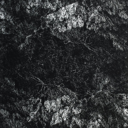 NOC I. / čárový lept 50x50cm / 2014     Night I. / etching 50x50cm / 2014