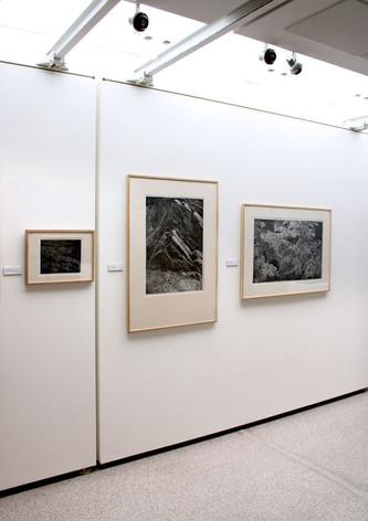 S.V.U. Mánes / Rabasova galerie v Rakovníku / 2020      S.V.U. Mánes / Rabas gallery in Rakovník / 2020