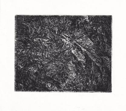 V ZAHRADĚ / čárový lept 12x10cm / 2017     In the garden / etching 12x10cm / 2017