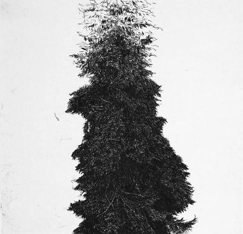 STRÁŽCE II. / čárový lept 30x30cm / 2013     Guardian of the Forest II. / etching 30x30cm / 2013