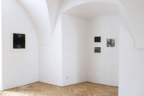Hluboko v lese / galerie Františka Drtikola v Příbrami / 2020      Deep in the Forest / František Drtikol Gallery in Příbram / 2020