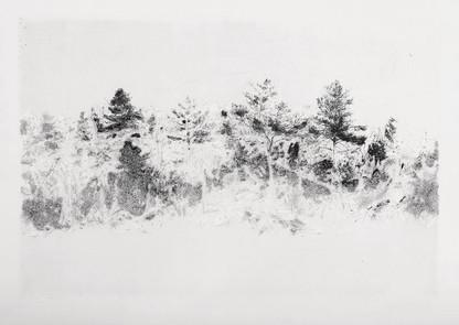 RANNÍ MLHA / lept 60x40cm / 2015       Morning fog / intaglio print 60x40cm / 2015