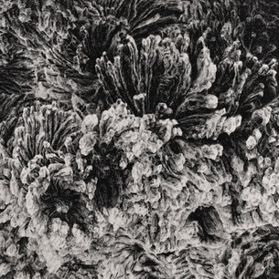 JINÉ SVĚTY II. / tuš na plátně 90x90cm / 2020       Other worlds II. / ink on canvas 90x90cm / 2020