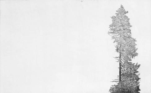TICHO / čárový lept 80x50cm / 2017  ve sbírkách Východočeské galerie v Pardubicích v soukromých sbírkách v ČR, Švýcarsku a Německu    Silence / etching 80x50cm / 2017   in the East Bohemian gallery collections / Pardubice    in a private collections in Switzerland, Germany and Czech Republic