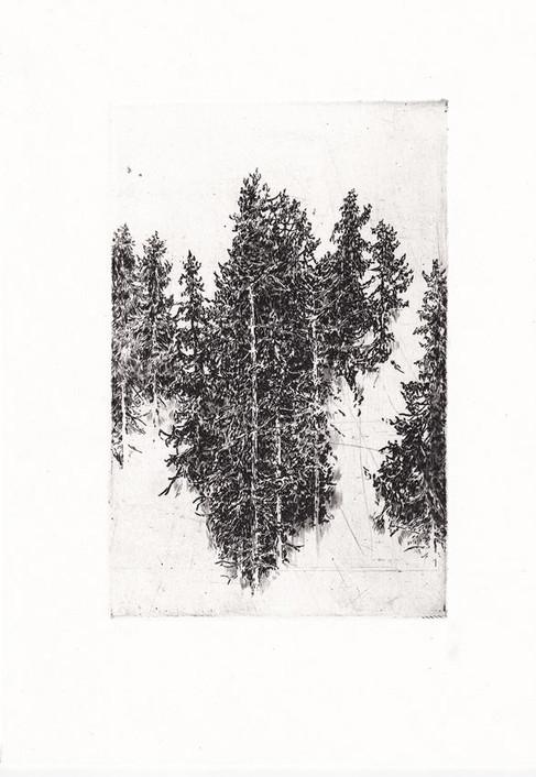 KRAJINOU JESENÍKŮ / čárový lept 15x10cm / 2018      Jeseniky landscape / etching 15x10cm / 2018