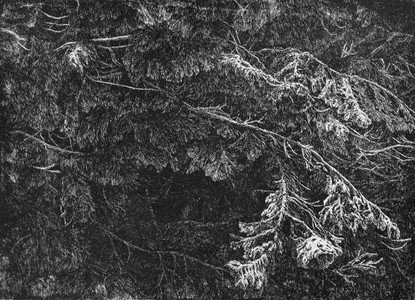 TAJEMSTVÍ TMY / čárový lept 43x32cm / 2014     Mysterious darkness / etching 43x32cm / 2014