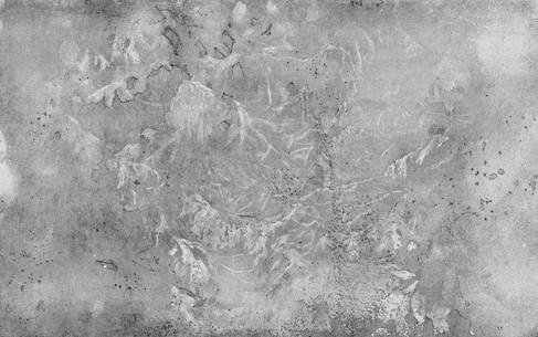PROBOUZENÍ LESA / lept 85x55cm / 2015  ve sbírkách Muzea umění v Olomouci     The Awakening of the Forest / etching, aquatint 85x55cm / 2015  in the collections of the Art Museum in Olomouc