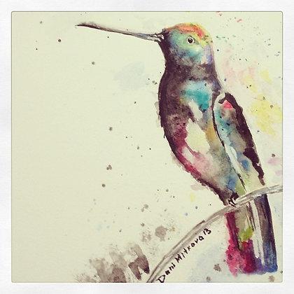 Watercolors Hummingbirds