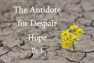 Despair hope pt 1.jpg