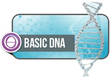 Basic DNA image.png