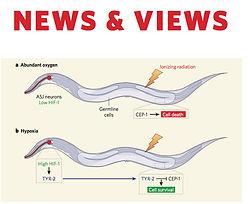 newsviews1.jpg
