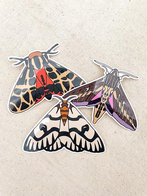 Moth Sticker 3 Pack