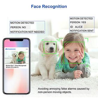 Sticker-Eye Face Recognition.jpg