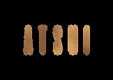 ATSUI_logo_cobre.png