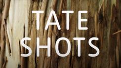 Tate Shots