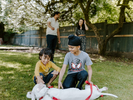 The Dharampals | backyard family session