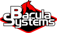 Bacula Systems.png