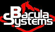 Bacula Systems.png