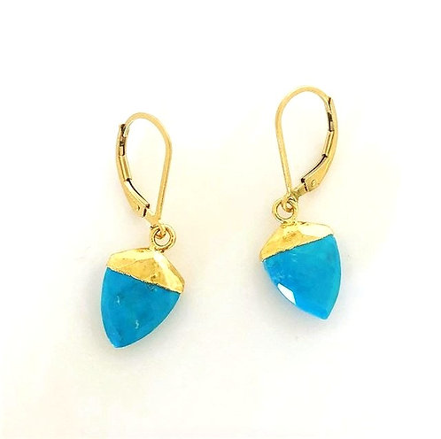 Turquoise Shark tooth Earrings
