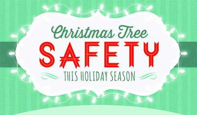 Tis the season to follow a few simple suggestions that will make your holidays festive and safe.