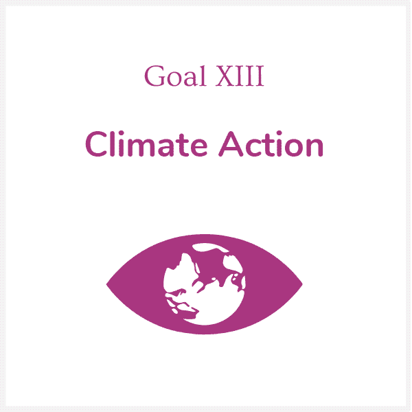 13_Climate_Action.png
