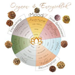 Emoties en ons lichaam ? - meditatieoefening