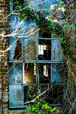 Windows with age