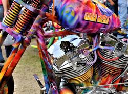 Janis Joplin Bike